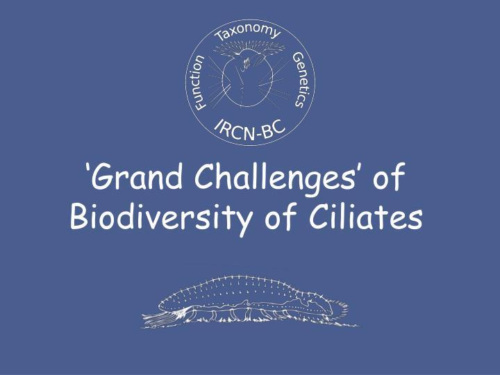 'Grand Challenges' of Biodiversity of Ciliates