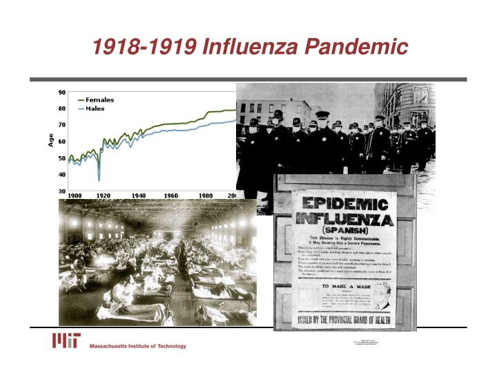1918-1919 Influenza Pandemic