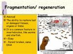 fragmentation regeneration