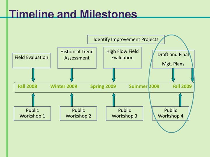 Timeline and Milestones