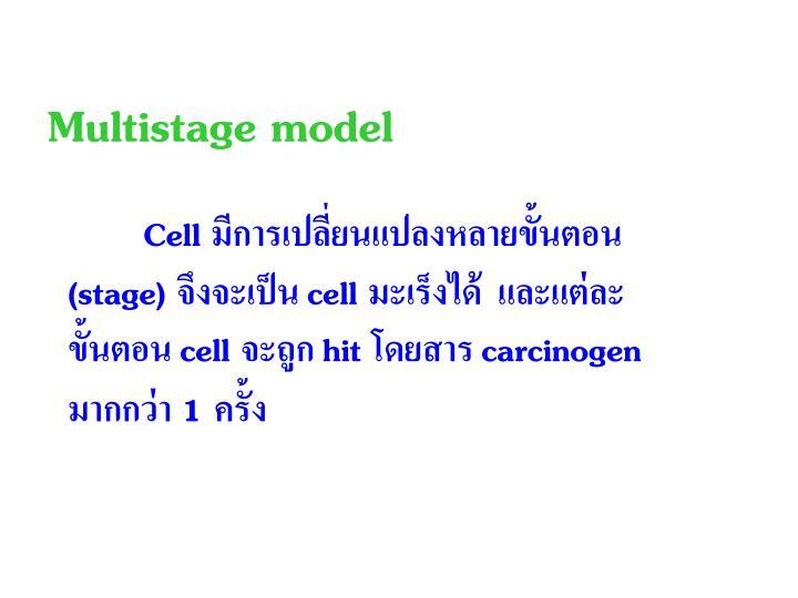 Multistage model