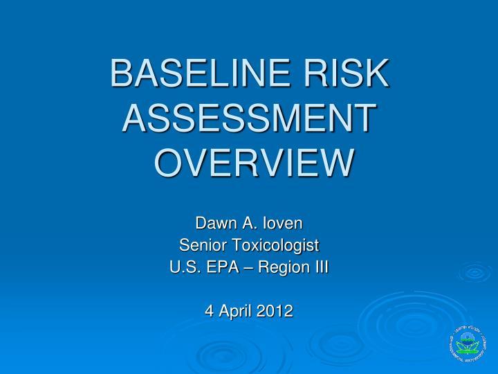 baseline risk assessment overview n.