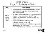 ltad model stage 3 training to train