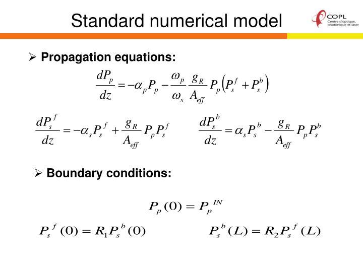 Standard numerical model