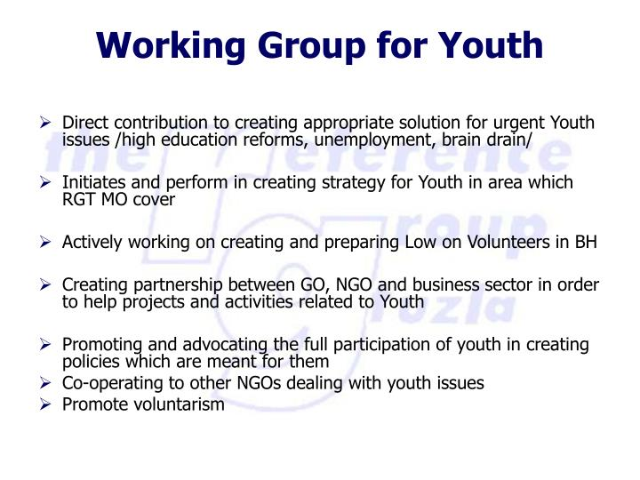 Direct contribution to creating appropriate solution for urgent Youth issues /high education reforms, unemployment, brain drain/