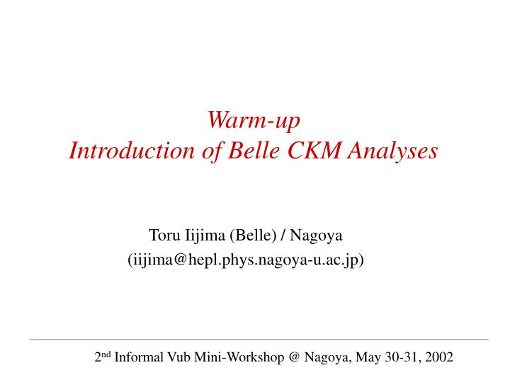 Warm up introduction of belle ckm analyses
