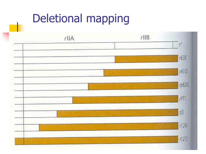 Deletional mapping