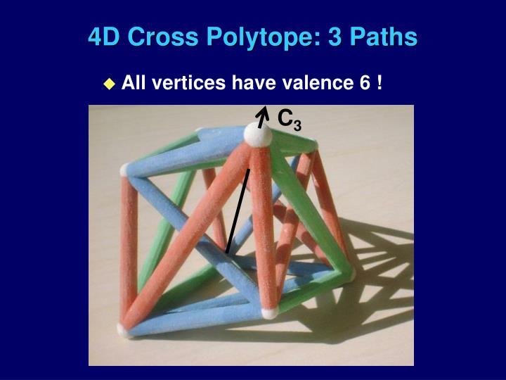 4D Cross Polytope: 3 Paths