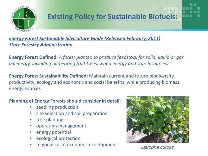 Existing Policy for Sustainable Biofuels: