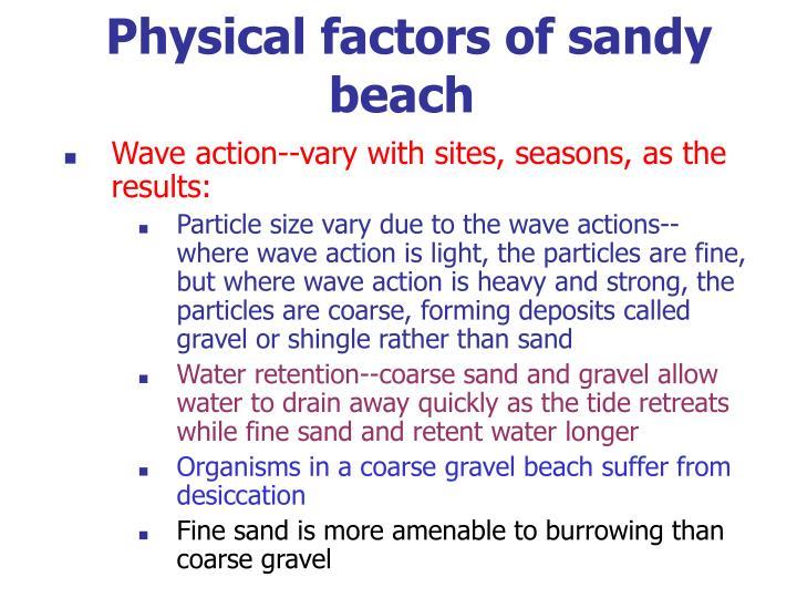 Physical factors of sandy beach