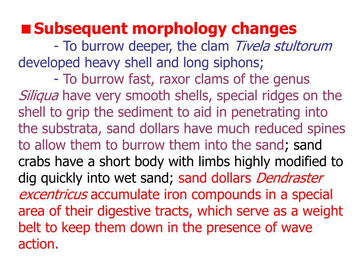 Subsequent morphology changes