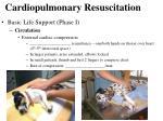 cardiopulmonary resuscitation4