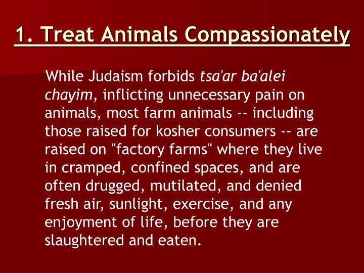 1. Treat Animals Compassionately