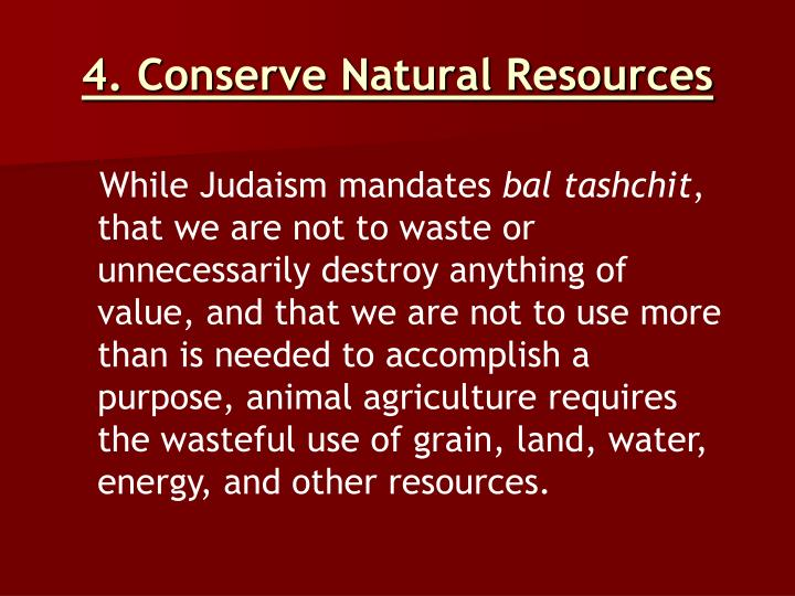 4. Conserve Natural Resources
