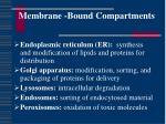 membrane bound compartments