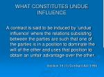 what constitutes undue influence