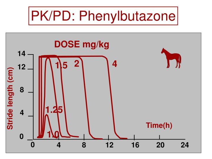 PK/PD: Phenylbutazone