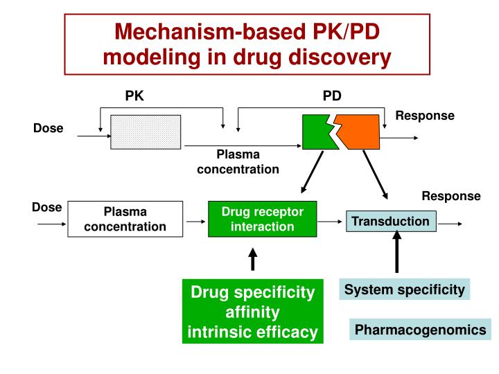 Mechanism-based PK/PD modeling in drug discovery