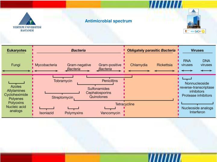 Antimicrobial spectrum