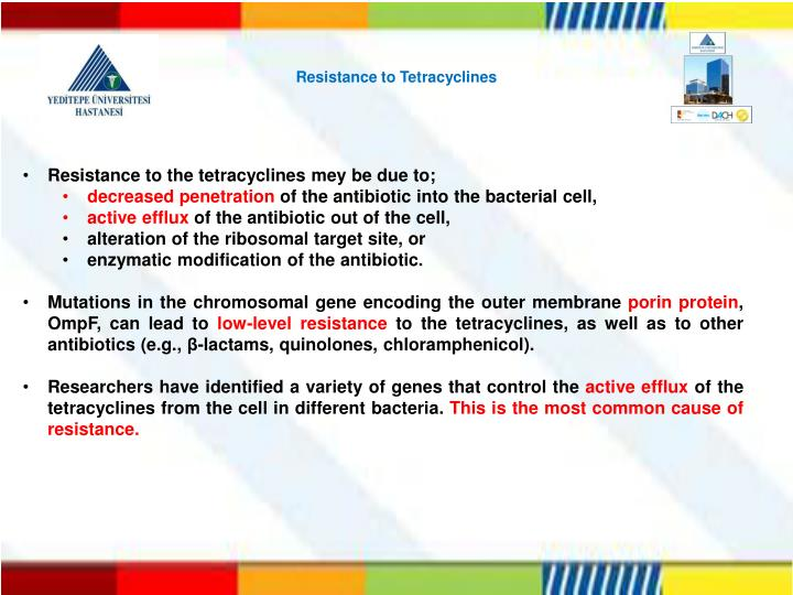 Resistance to Tetracyclines