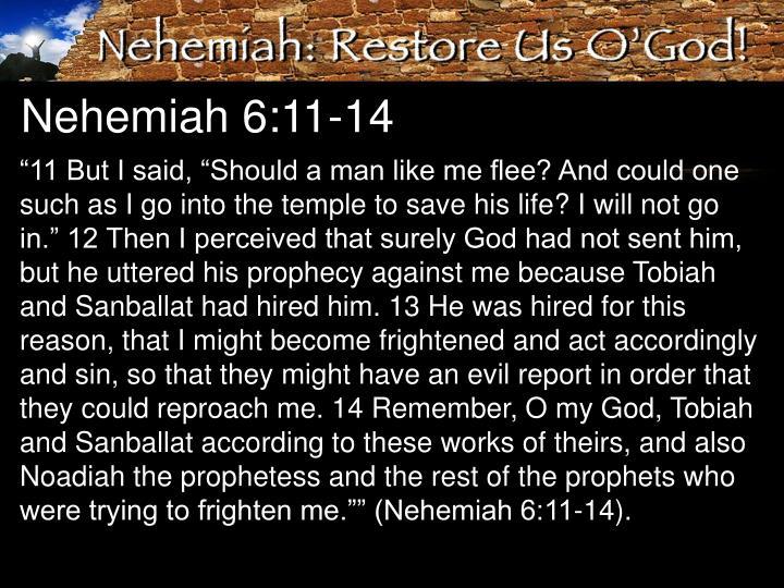 Nehemiah 6:11-14