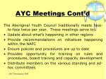 ayc meetings cont d