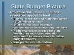 state budget picture1