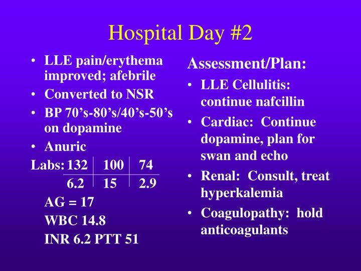 LLE pain/erythema improved; afebrile