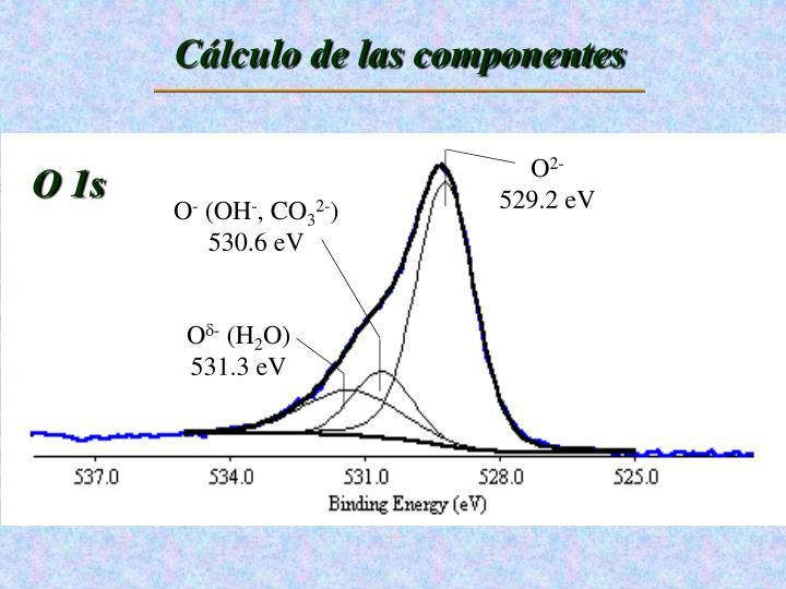 Cálculo de las componentes