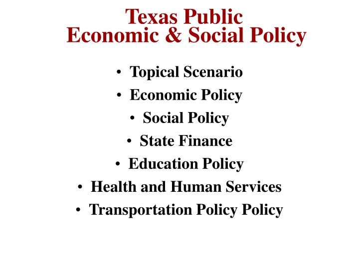 texas public economic social policy n.
