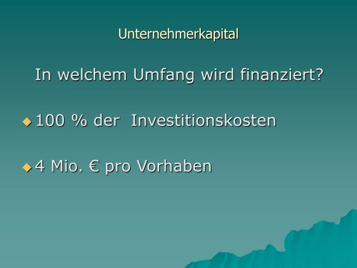 Unternehmerkapital