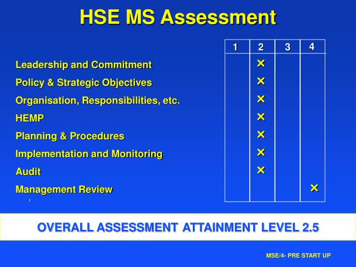 HSE MS Assessment