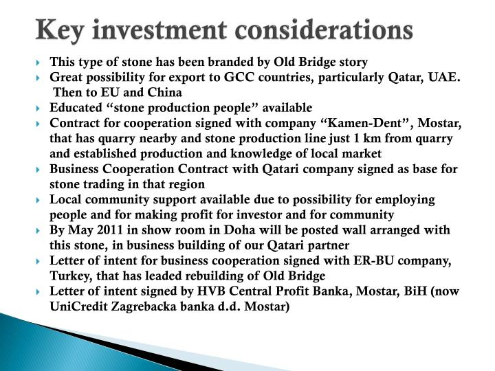 Key investment considerations