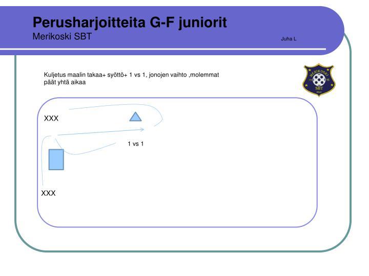Perusharjoitteita G-F juniorit
