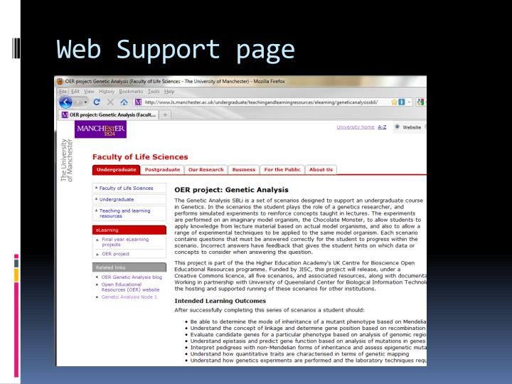 Web Support page