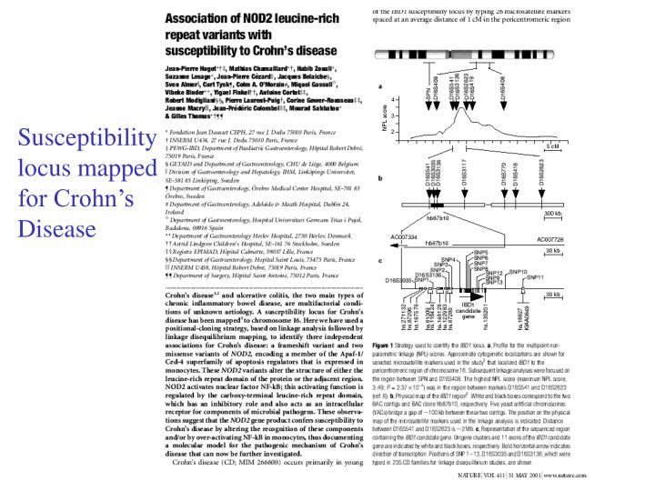 Susceptibility locus mapped for Crohn's Disease
