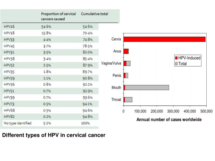 Different types of HPV in cervical cancer