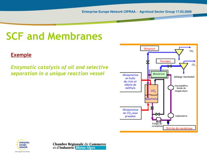 SCF and Membranes