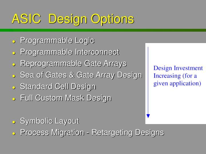 ASIC  Design Options