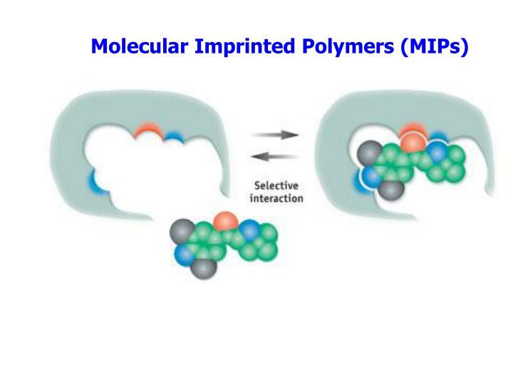 Molecular Imprinted Polymers (MIPs)