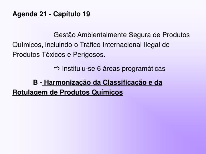 Agenda 21 - Capítulo 19