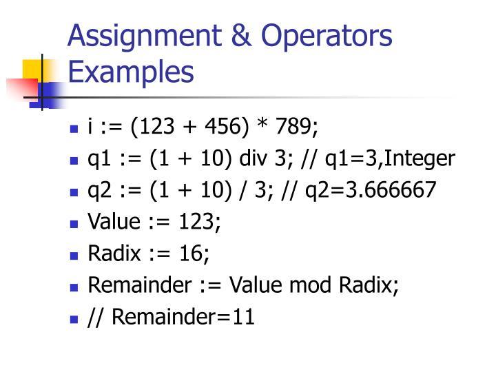 Assignment & Operators Examples