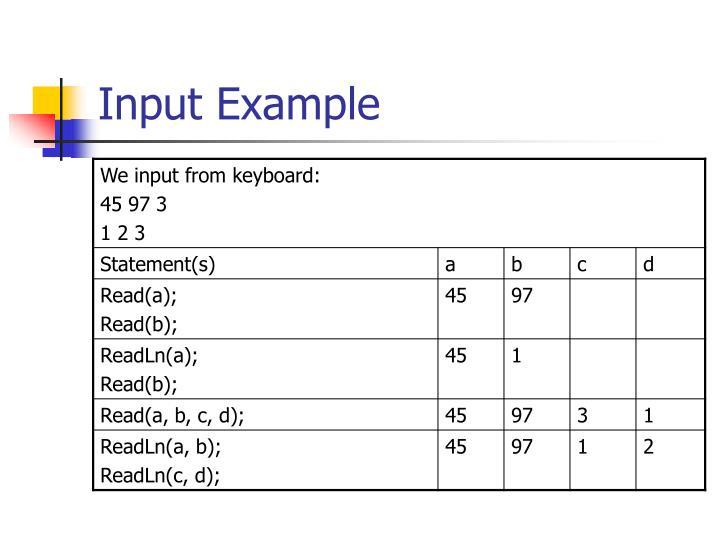 Input Example