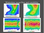 wintertime mean flow and variability
