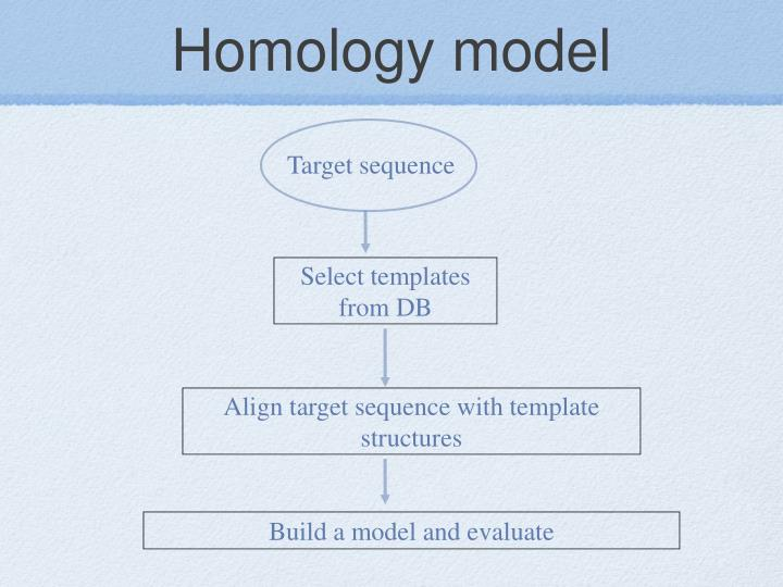 Homology model