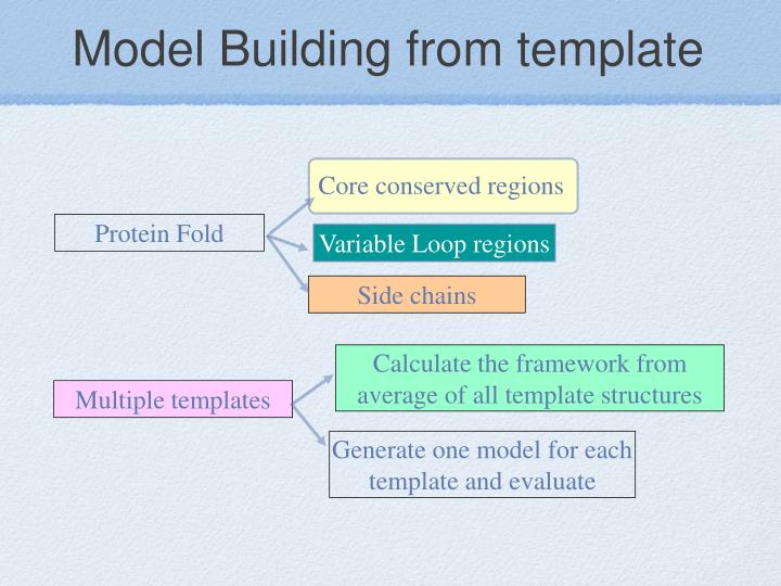 Model Building from template