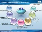 domestic standardization forum activities