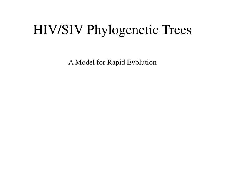 Hiv siv phylogenetic trees