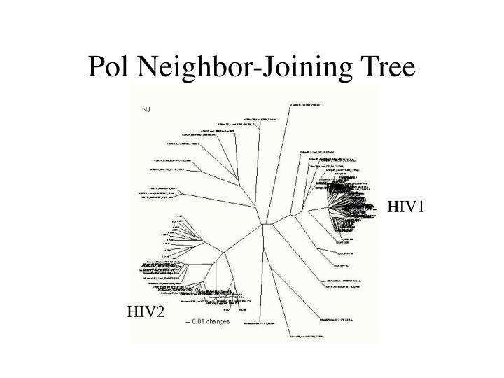 Pol Neighbor-Joining Tree