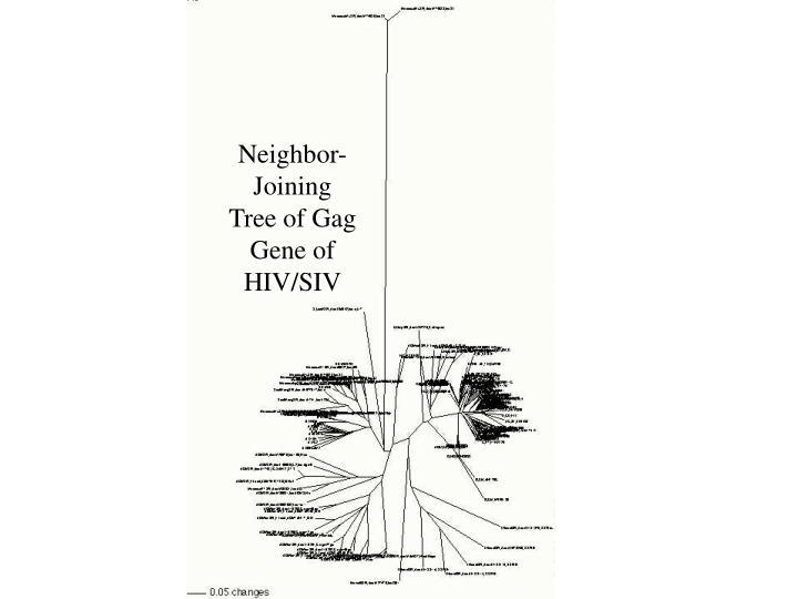 Neighbor-Joining Tree of Gag Gene of HIV/SIV